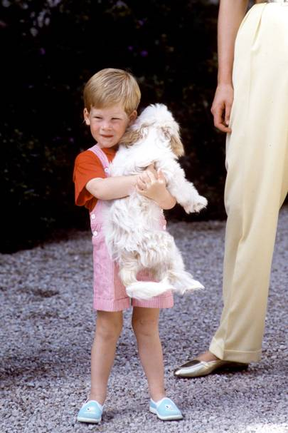 Prince Harry in 1987