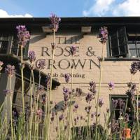 Rose & Crown in Winkfield, Berkshire