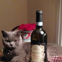 This little pussy only sips red wine