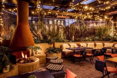 Double Standard Winter Terrace