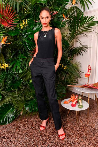 Joan Smalls at the Alexendre Birman dinner
