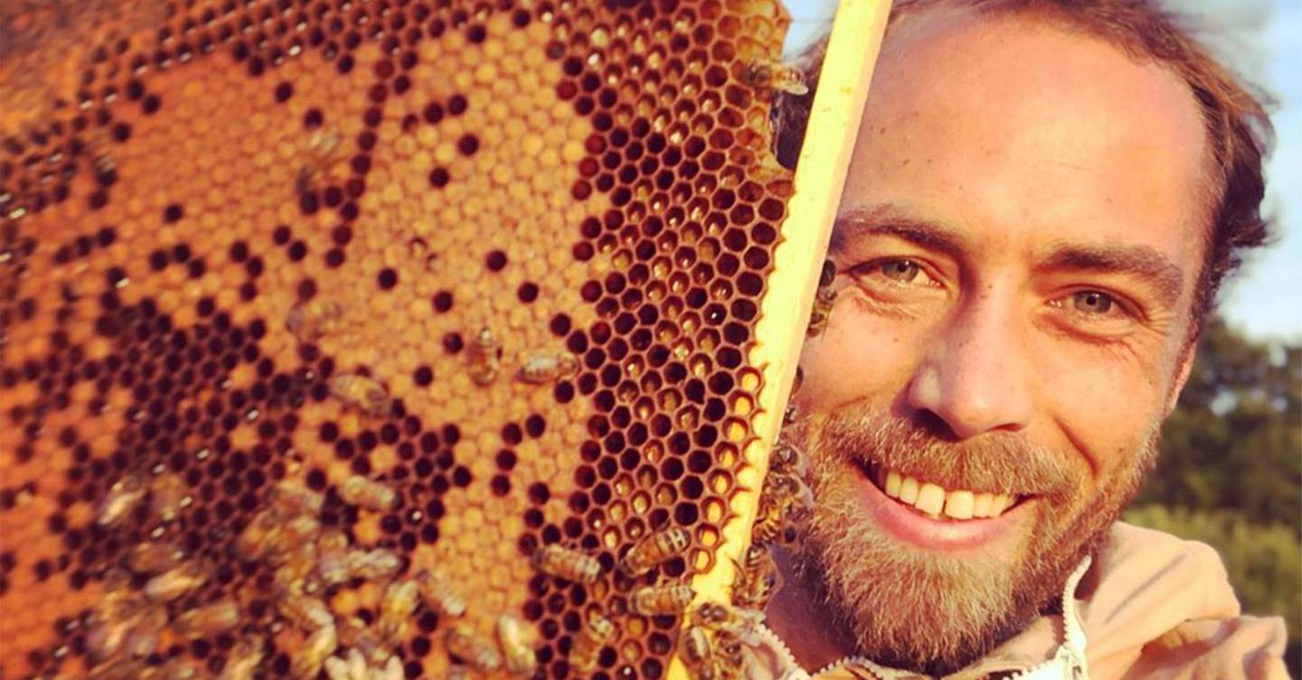 Beekeeping is the new A-list trend to get on board with now, says James Middleton