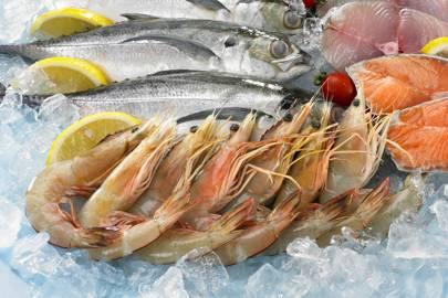 Johnsons Mobile Fish Stalls