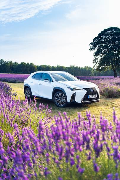 The Lexus UX: the little brother of the RX is a compact, great-looking SUV