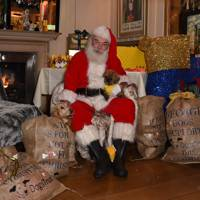 Father Christmas and his pups