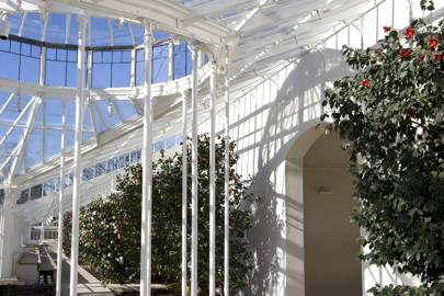 Chiswick Conservatory