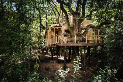 The Woodsman's Treehouse