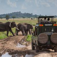 Africa Travel safari and beach holiday in Tanzania