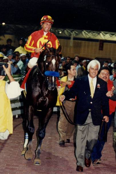 Captain Steve, the winning horse