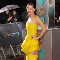 Alternative Cleavage Prize: Marion Cotillard's thighs