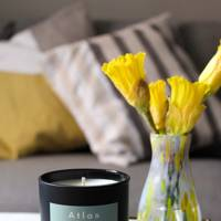 Atlas Soy Candles