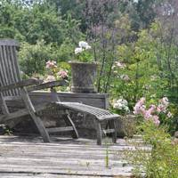 The Landscape Gardener: Rachael White Designs