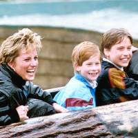The Princess of Wales, Prince Harry and Prince William, 1993