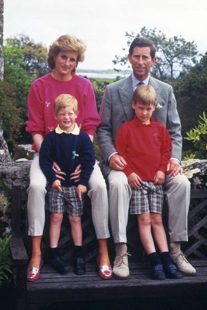 The Princess of Wales, Prince Harry, the Prince of Wales and Prince William, 1989