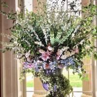 Paul Hawkins Flowers