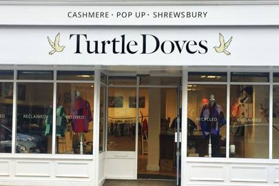 Turtle Doves Cashmere