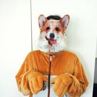 Eve Jones as a corgi with rabies
