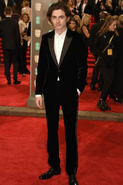 Timothée Chalamet in Saint Laurent