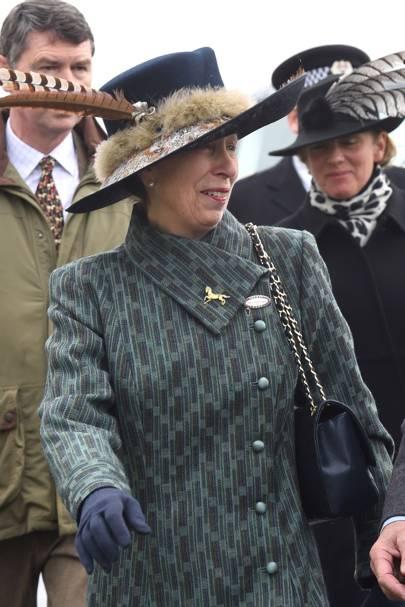 The Princess Royal in 2014