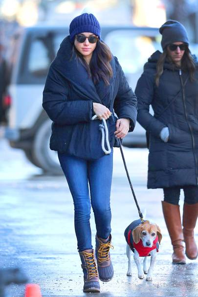 The fairytale story behind Meghan's beloved rescue beagle, Guy