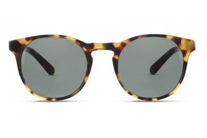 Finlay & Co sunglasses