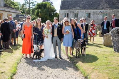 Bovril, Pru and Earwig at Charlie and Fee Higson's wedding
