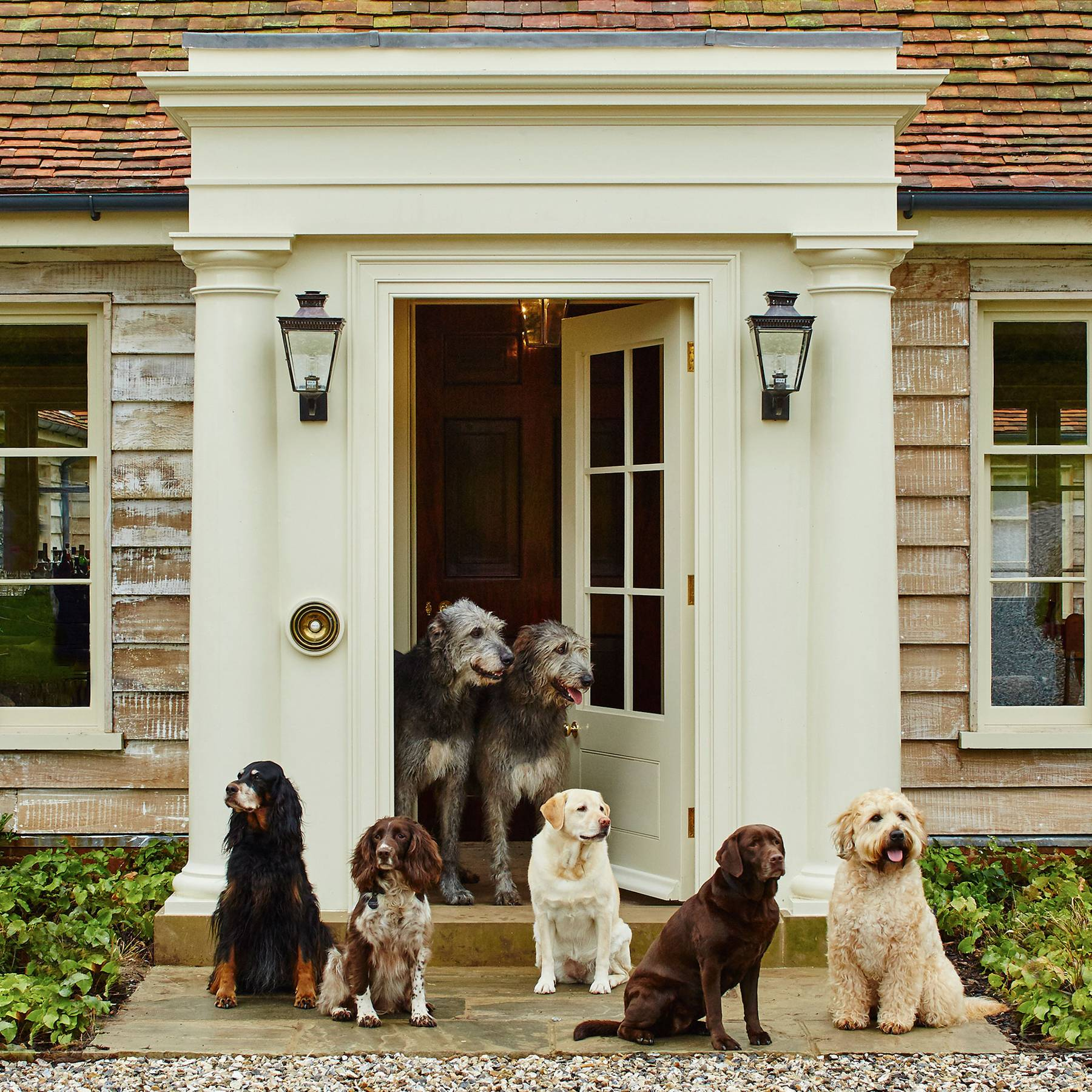 The Duke and Duchess of Richmond invite dogs to Goodwood Estate for Goodwoof