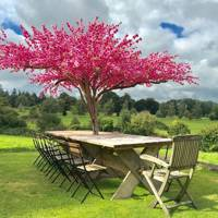 Blossom Tree Parasols by Temple Home